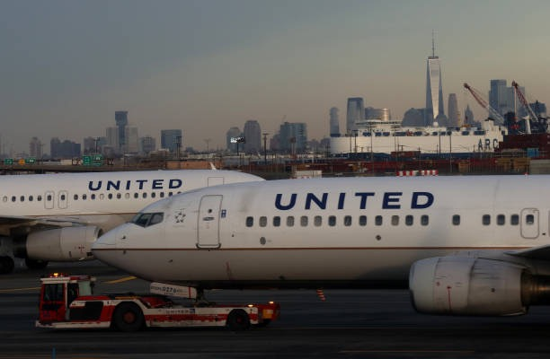 Dog dies after united flight attendant puts it in overhead for Air canada pet in cabin