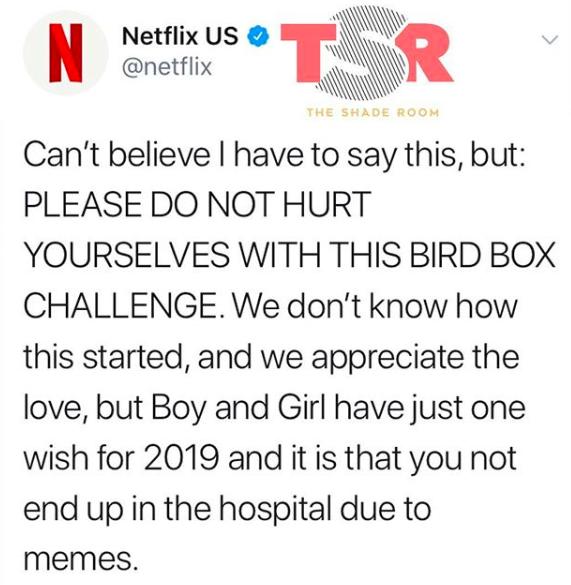 Netflix Issues Warning Over #BirdBoxChallenge